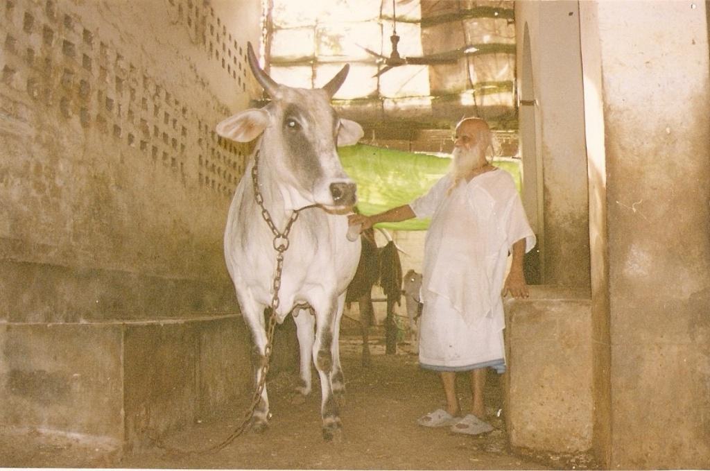 Šri Haridasa Šastri Maharadžas 2